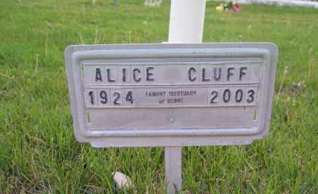 CLUFF, ALICE - Gila County, Arizona | ALICE CLUFF - Arizona Gravestone Photos