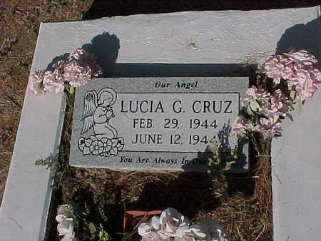CRUZ, LUCIA  G. - Gila County, Arizona | LUCIA  G. CRUZ - Arizona Gravestone Photos