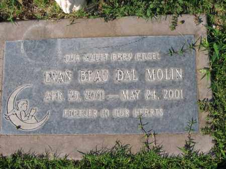DAL MOLIN, EVAN BEAU - Gila County, Arizona | EVAN BEAU DAL MOLIN - Arizona Gravestone Photos