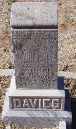DAVIES, GLENDOLYN - Gila County, Arizona | GLENDOLYN DAVIES - Arizona Gravestone Photos