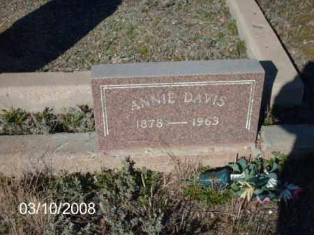 DAVIS, ANNIE - Gila County, Arizona   ANNIE DAVIS - Arizona Gravestone Photos