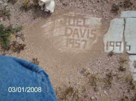 DAVIS, JOEL - Gila County, Arizona | JOEL DAVIS - Arizona Gravestone Photos