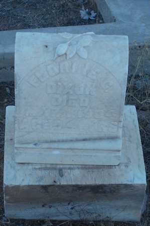 DIXON, FLORINE G. - Gila County, Arizona | FLORINE G. DIXON - Arizona Gravestone Photos