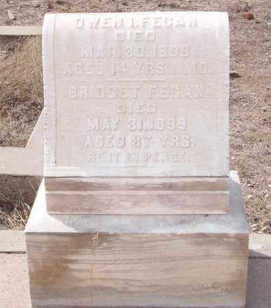 FEGAN, BRIDGET - Gila County, Arizona | BRIDGET FEGAN - Arizona Gravestone Photos