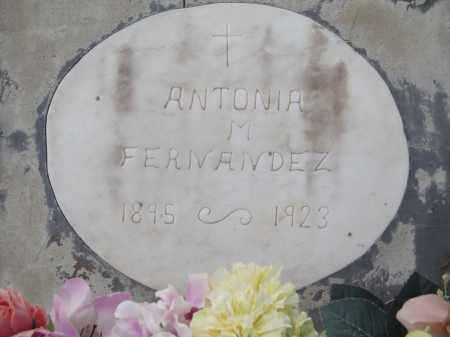 MARTINEZ FERNANDEZ, ANTONIA - Gila County, Arizona | ANTONIA MARTINEZ FERNANDEZ - Arizona Gravestone Photos