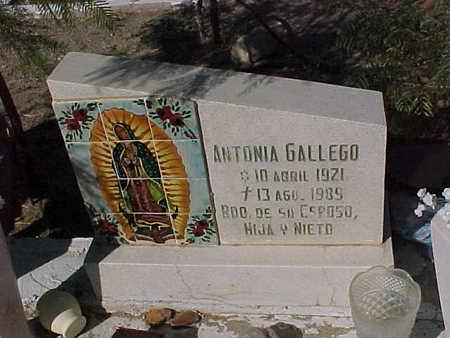 GALLEGO, ANTONIA - Gila County, Arizona | ANTONIA GALLEGO - Arizona Gravestone Photos