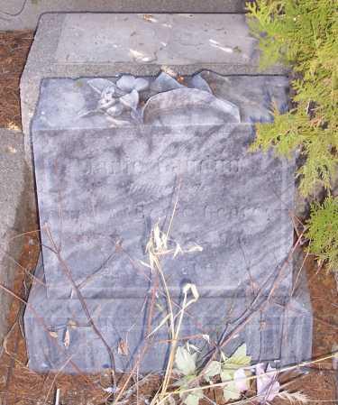 GAUDINI, JANIE - Gila County, Arizona | JANIE GAUDINI - Arizona Gravestone Photos
