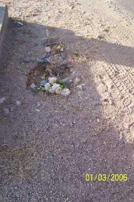 GOMEZ, ELEAZAR - Gila County, Arizona | ELEAZAR GOMEZ - Arizona Gravestone Photos