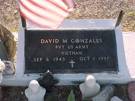 GONZALES, DAVID  M. - Gila County, Arizona | DAVID  M. GONZALES - Arizona Gravestone Photos