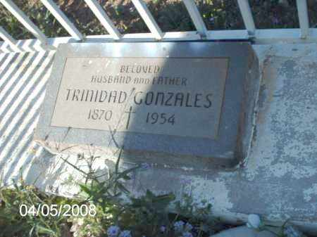 GONZALES, TRINIDAD - Gila County, Arizona | TRINIDAD GONZALES - Arizona Gravestone Photos