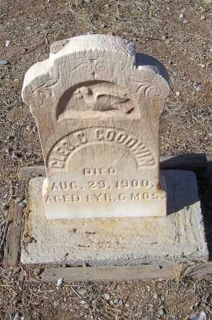GOODWIN, CLEO C. - Gila County, Arizona | CLEO C. GOODWIN - Arizona Gravestone Photos