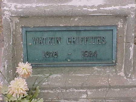 GRIFFITHS, WATKINS - Gila County, Arizona | WATKINS GRIFFITHS - Arizona Gravestone Photos