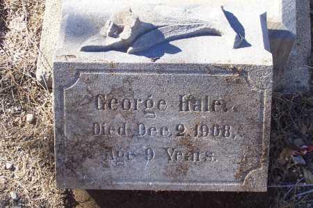 HALE, GEORGE - Gila County, Arizona | GEORGE HALE - Arizona Gravestone Photos