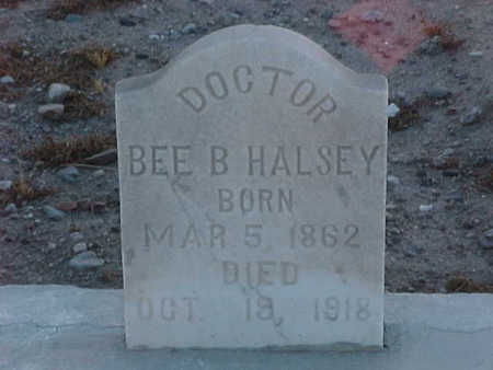 HALSEY, DR., BEE B. - Gila County, Arizona | BEE B. HALSEY, DR. - Arizona Gravestone Photos
