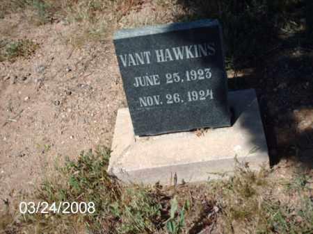 HAWKINS, VANT - Gila County, Arizona | VANT HAWKINS - Arizona Gravestone Photos