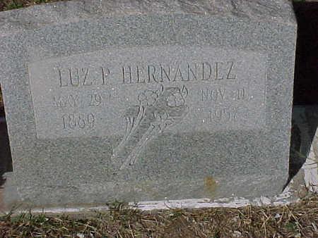 HERNANDEZ, LUZ P. - Gila County, Arizona | LUZ P. HERNANDEZ - Arizona Gravestone Photos