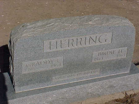 HERRING, GRADDY  L., SR. - Gila County, Arizona | GRADDY  L., SR. HERRING - Arizona Gravestone Photos