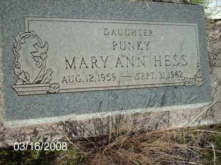 HESS, MARY - Gila County, Arizona | MARY HESS - Arizona Gravestone Photos