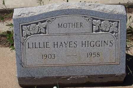 HAYES HIGGINS, LILLIE - Gila County, Arizona | LILLIE HAYES HIGGINS - Arizona Gravestone Photos