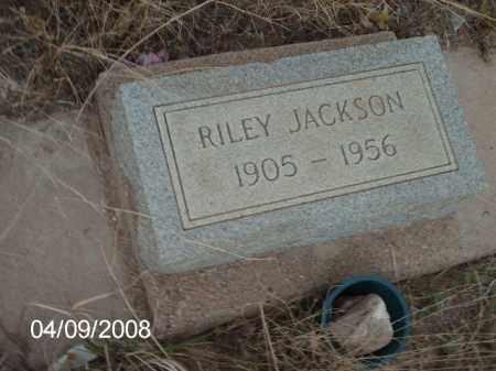 JACKSON, RILEY - Gila County, Arizona | RILEY JACKSON - Arizona Gravestone Photos