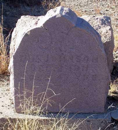 JOHNSON, JIM - Gila County, Arizona | JIM JOHNSON - Arizona Gravestone Photos