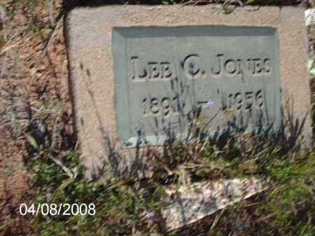 JONES, LEE C. - Gila County, Arizona   LEE C. JONES - Arizona Gravestone Photos