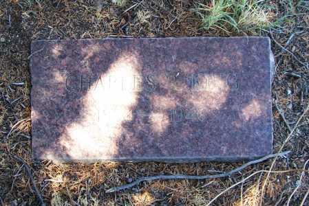 KING, CHARLES R. - Gila County, Arizona | CHARLES R. KING - Arizona Gravestone Photos