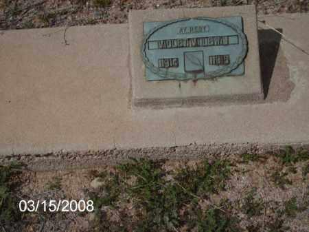 LEWIS, VIOLET - Gila County, Arizona | VIOLET LEWIS - Arizona Gravestone Photos