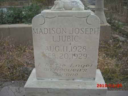 LJUBIC, MADISON JOSEPH - Gila County, Arizona | MADISON JOSEPH LJUBIC - Arizona Gravestone Photos