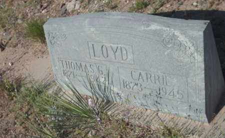 LOYD, CARRIE - Gila County, Arizona | CARRIE LOYD - Arizona Gravestone Photos