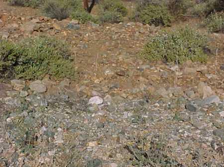 MARIN, MARIA - Gila County, Arizona | MARIA MARIN - Arizona Gravestone Photos
