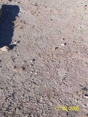 MCGOVERN, EDGAR - Gila County, Arizona | EDGAR MCGOVERN - Arizona Gravestone Photos