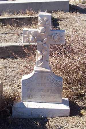 MEISNER, CHARLES - Gila County, Arizona | CHARLES MEISNER - Arizona Gravestone Photos