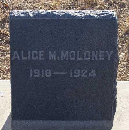 MOLONEY, ALICE M. - Gila County, Arizona | ALICE M. MOLONEY - Arizona Gravestone Photos