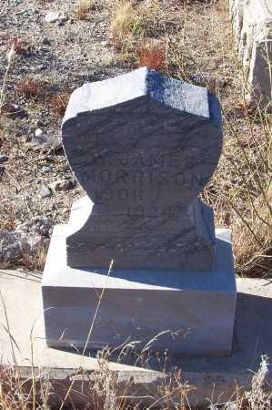 MORRISON, W. JAMES - Gila County, Arizona   W. JAMES MORRISON - Arizona Gravestone Photos