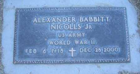 NICOLLS, ALEXANDER JR. - Gila County, Arizona   ALEXANDER JR. NICOLLS - Arizona Gravestone Photos