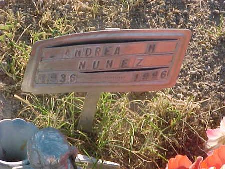 NUNEZ, ANDREA  M. - Gila County, Arizona | ANDREA  M. NUNEZ - Arizona Gravestone Photos