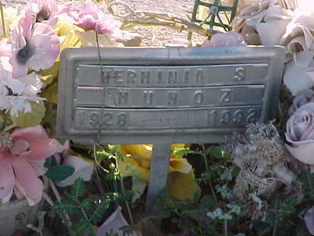 MUNOZ, HERMINIA  S. - Gila County, Arizona | HERMINIA  S. MUNOZ - Arizona Gravestone Photos