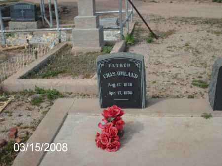 OMLAND, CHAS - Gila County, Arizona | CHAS OMLAND - Arizona Gravestone Photos