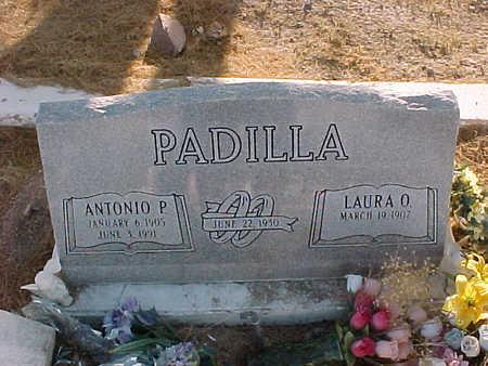 PADILLA, ANTONIO P. - Gila County, Arizona | ANTONIO P. PADILLA - Arizona Gravestone Photos