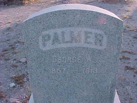 PALMER, GEORGE W. - Gila County, Arizona | GEORGE W. PALMER - Arizona Gravestone Photos