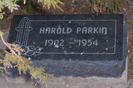PARKIN, HAROLD - Gila County, Arizona | HAROLD PARKIN - Arizona Gravestone Photos