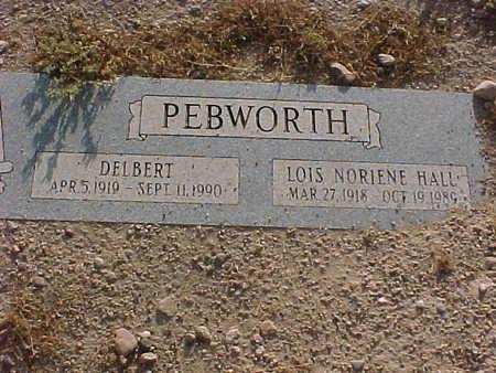 PEBWORTH, LOIS NORINE - Gila County, Arizona | LOIS NORINE PEBWORTH - Arizona Gravestone Photos