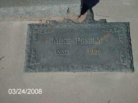 PESELY, MIKE - Gila County, Arizona | MIKE PESELY - Arizona Gravestone Photos