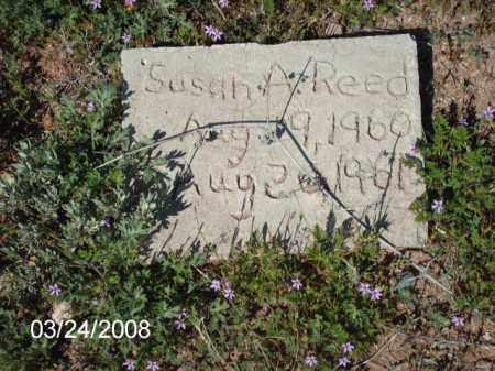 REED, SUSAN - Gila County, Arizona | SUSAN REED - Arizona Gravestone Photos