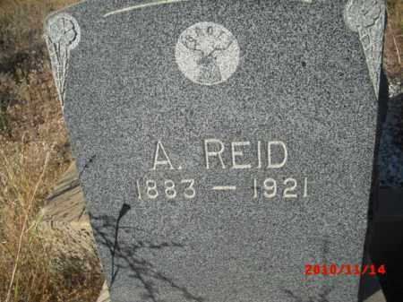 REID, A. - Gila County, Arizona | A. REID - Arizona Gravestone Photos