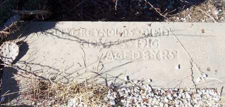 REYNOLDS, DOLLY I. - Gila County, Arizona | DOLLY I. REYNOLDS - Arizona Gravestone Photos