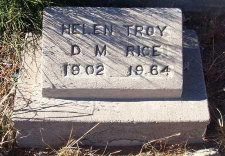 RICE, HELEN TROY D.M. - Gila County, Arizona | HELEN TROY D.M. RICE - Arizona Gravestone Photos