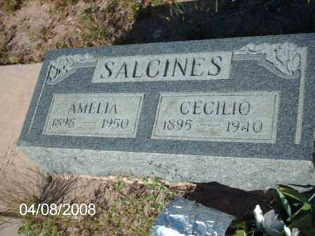 SALCINES, CECILIO - Gila County, Arizona | CECILIO SALCINES - Arizona Gravestone Photos
