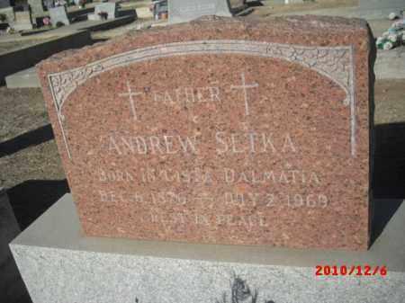 SETKA, ANDREW - Gila County, Arizona | ANDREW SETKA - Arizona Gravestone Photos